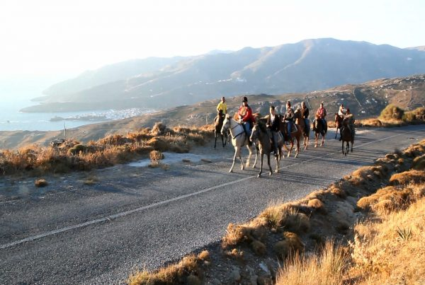 top 3 activities in andros
