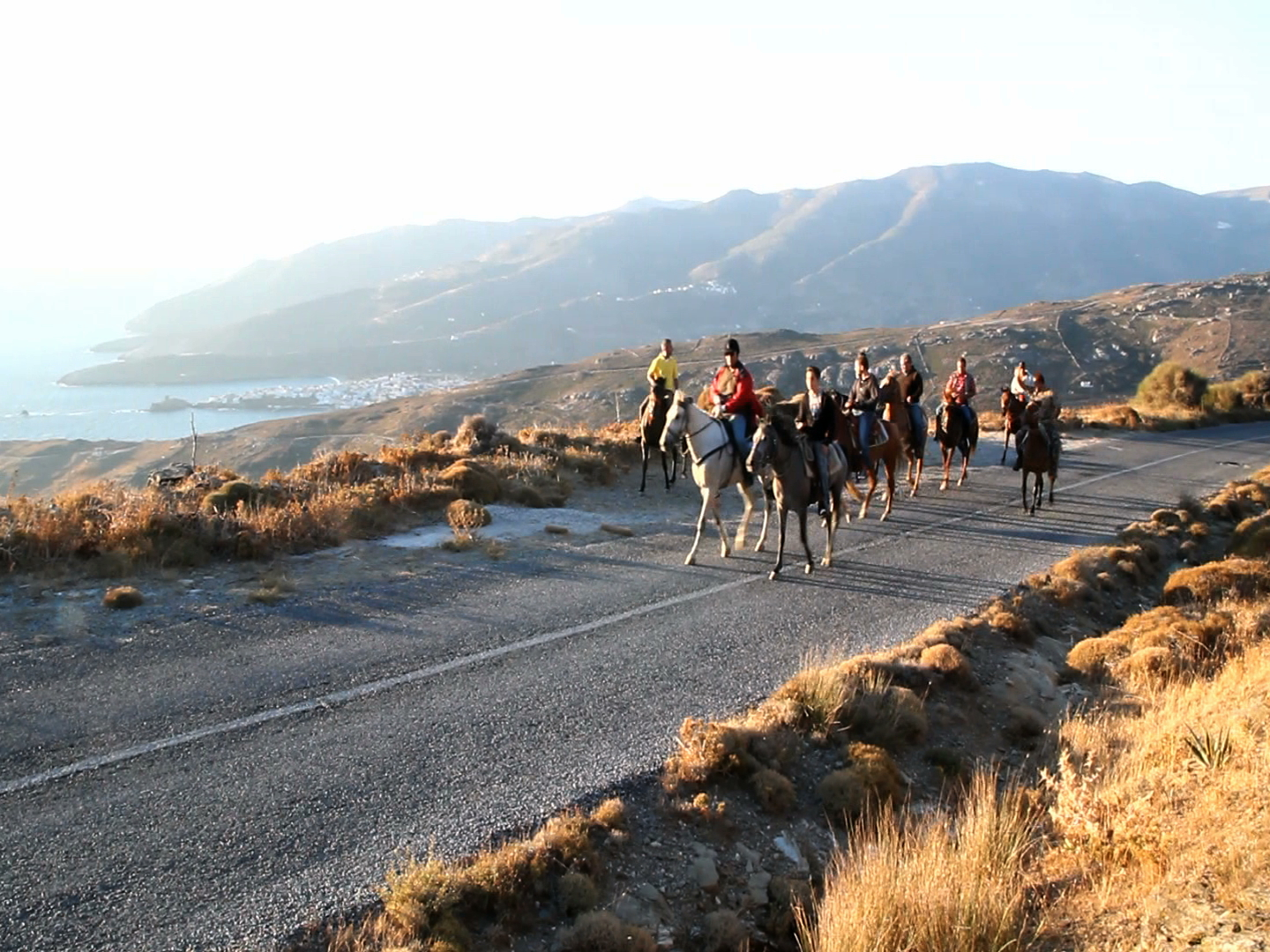 Horse Back Riding in Andros