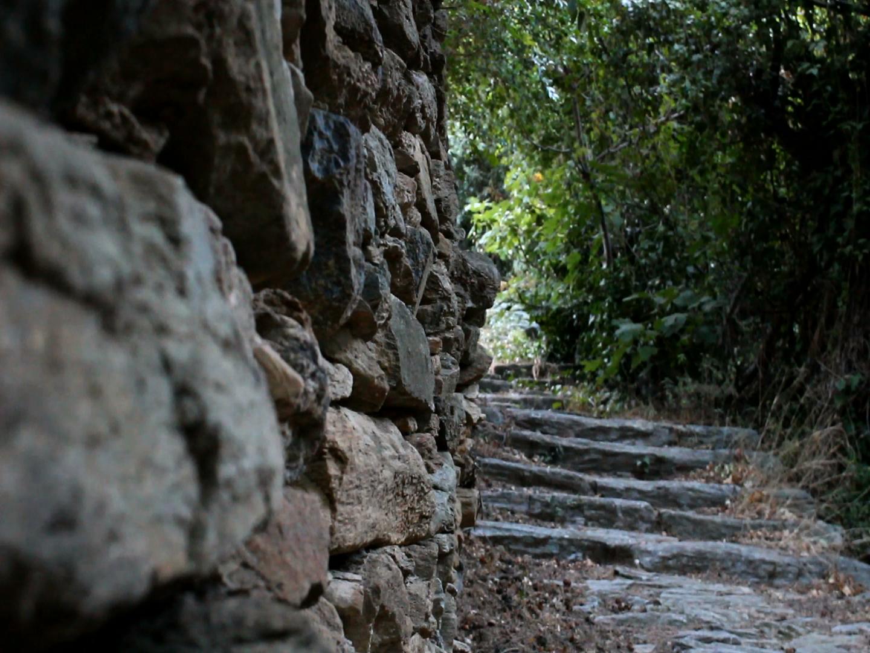 Top 3 Activities in Andros