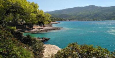 The beach with the blue waters and the tufted trees next to Athens