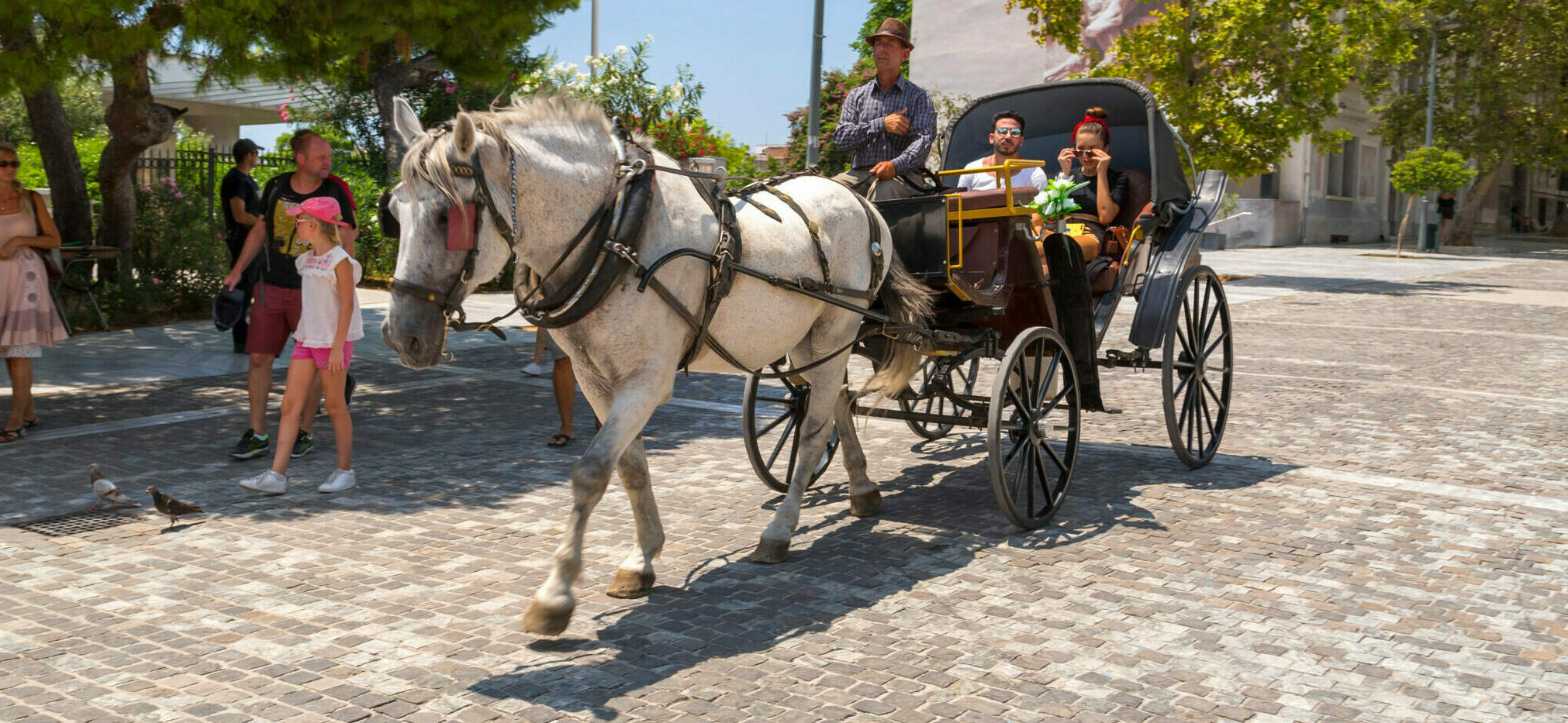 Back in time with Athens' horse-drawn trams
