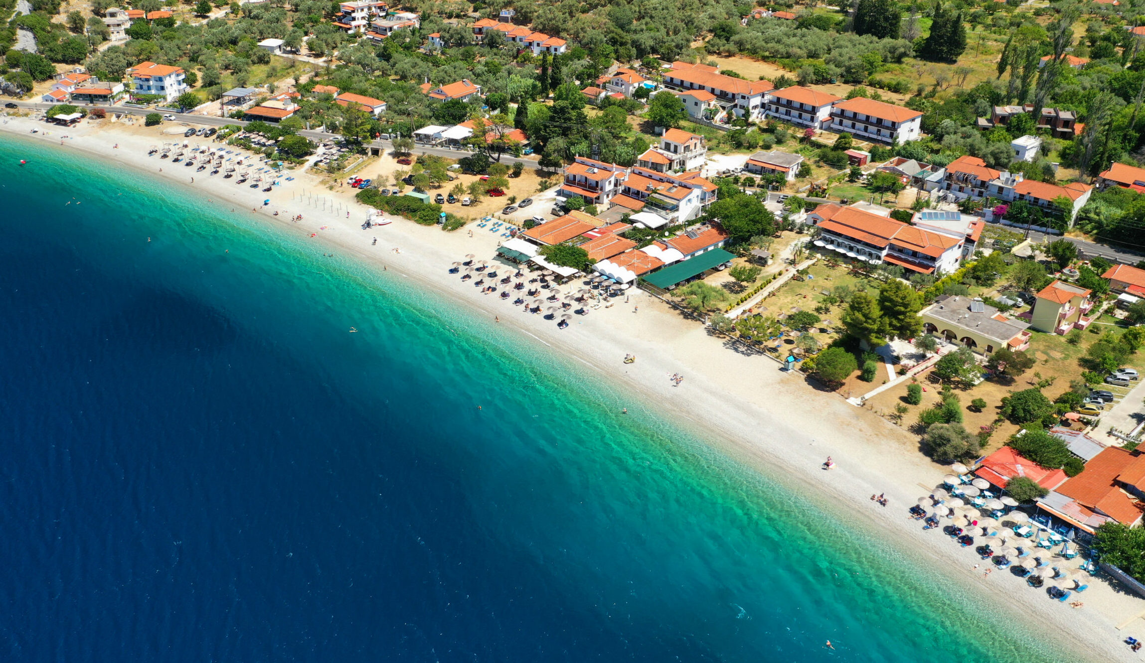 Aegean Sea: The beach with the pine trees touching the sea
