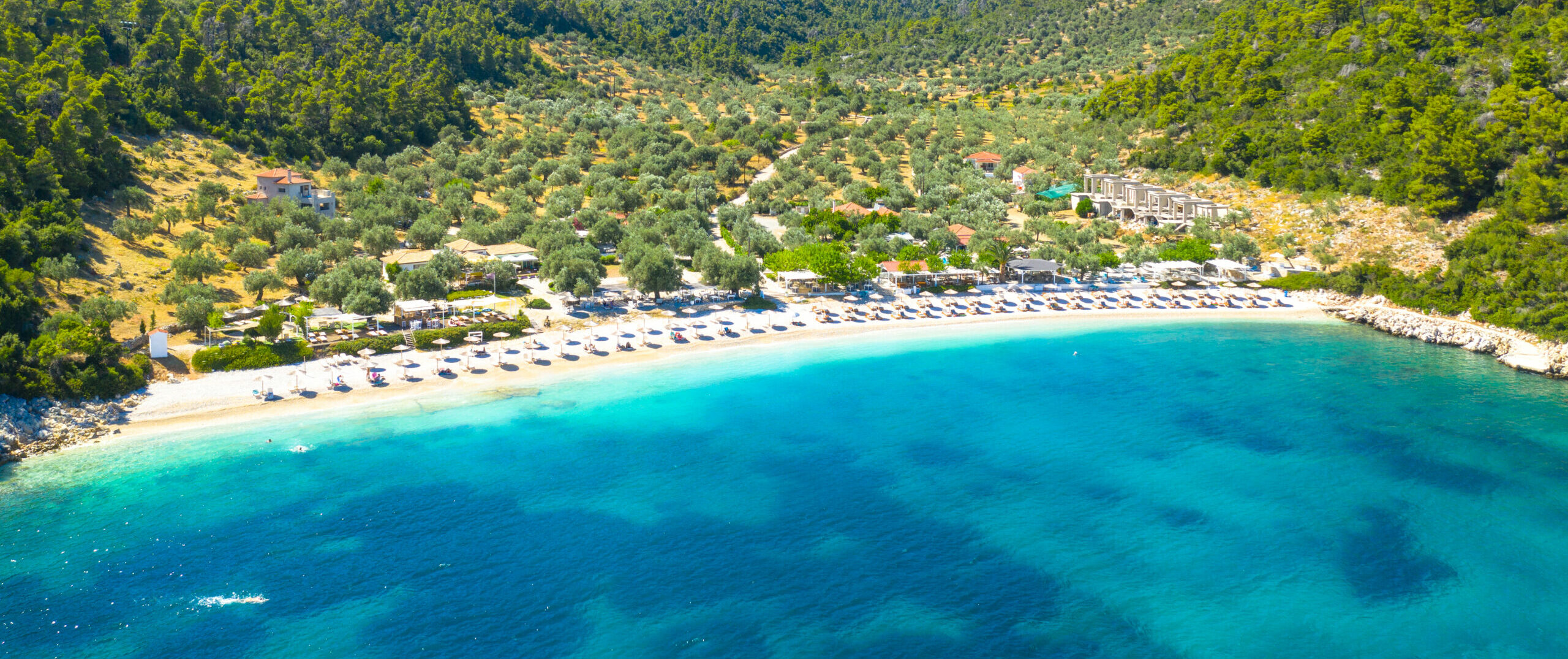 Alonissos: The green island with the underwater museum