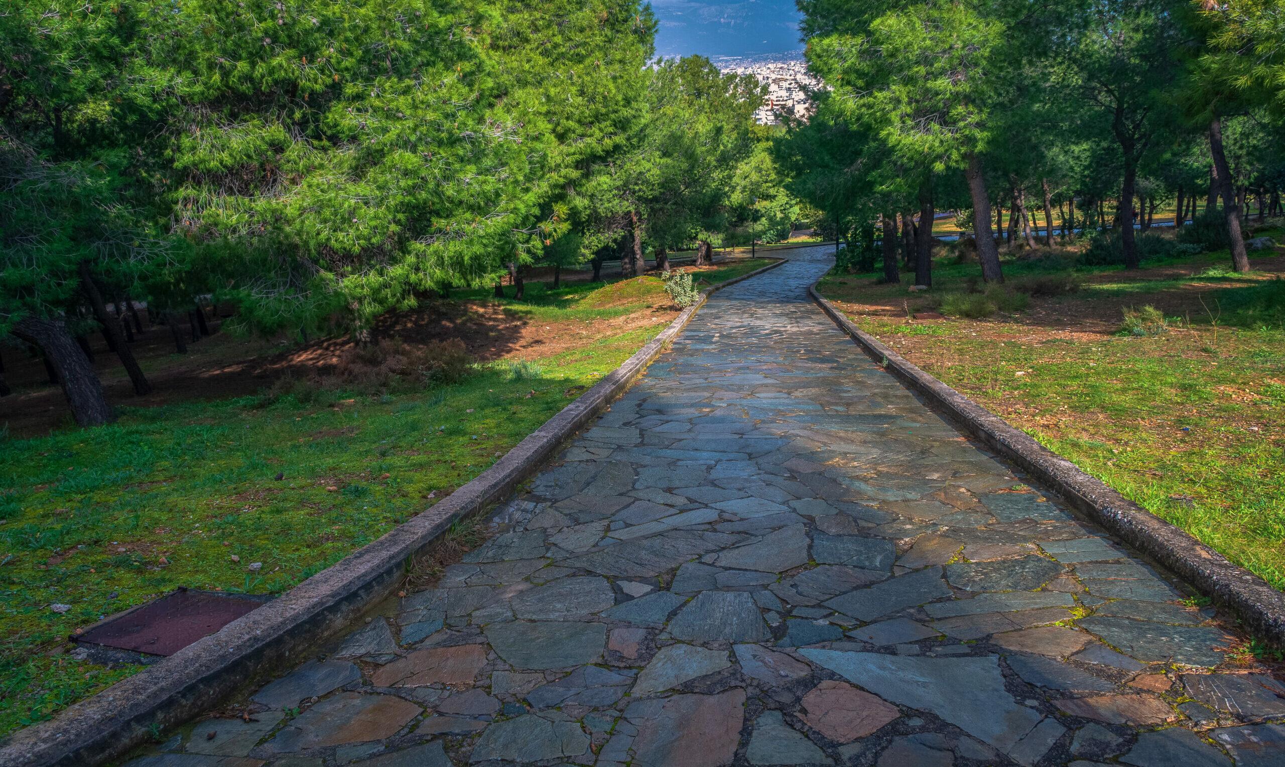 Veikos Grove: The favorite green destination of Athens