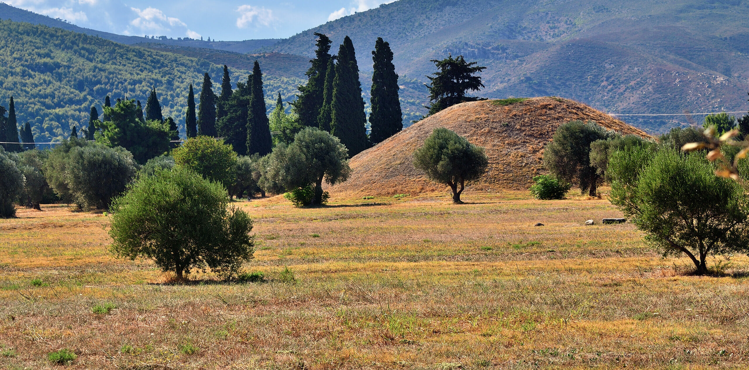 Marathon: The swamp that saved ancient Athens from the Persians