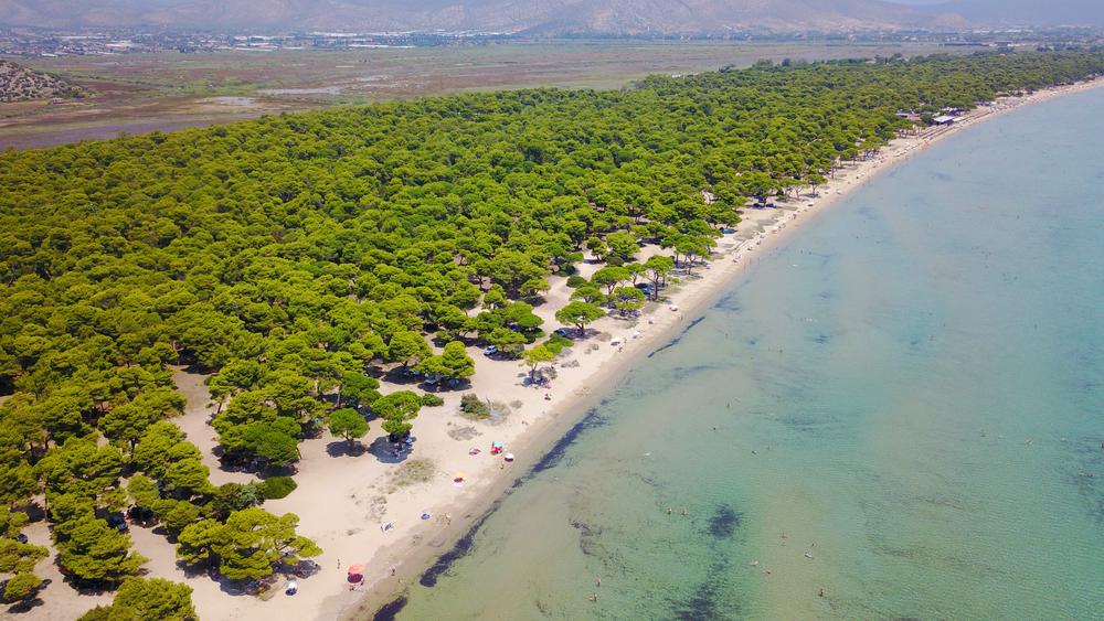 national park schinias beach marathon